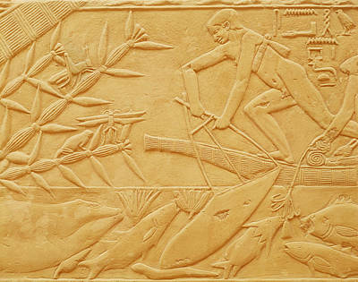 Locust Photograph - Fishing Scene, From The Mastaba Of Kagemni, Old Kingdom Limestone by Egyptian 6th Dynasty