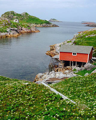 Photograph - Fishing Stage Little Fogo Island Newfoundland by Lisa Phillips