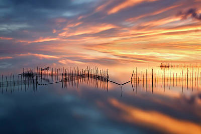 Golden Skies Photograph - Fishnets by Jose Beut