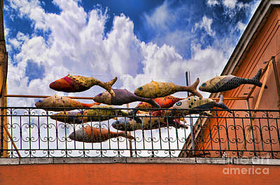 Photograph - Fishy Art In Venice by Brenda Kean