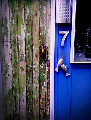Photograph - Fishy Door by Amanda Mitchell