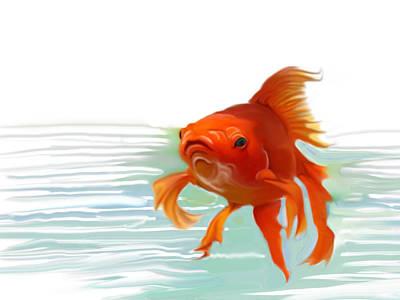 Fishy Fishy Fish Art Print by Christian Kolle