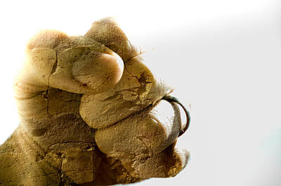 Photograph - Fist Made Of Rock by Anthony Doudt