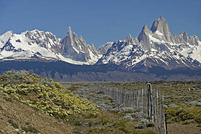 Photograph - Fitz Roy Range In Springtime 1 by Michele Burgess