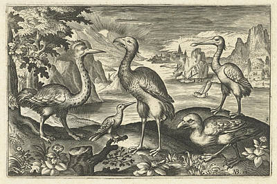 Spoonbill Drawing - Five Birds Including Spoonbill, Anonymous by Artokoloro