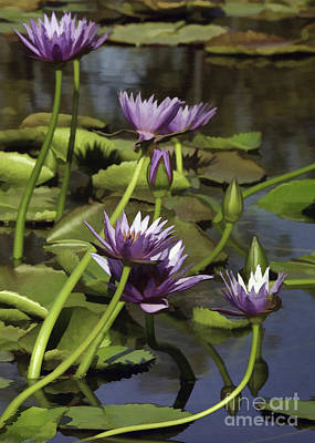 Photograph - Five Purple Lilies by Sharon Foster