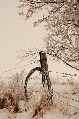 Art Print featuring the photograph Fixing Fence by Shirley Heier