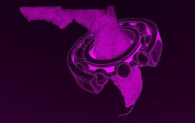 Photograph - Fla Sprocket Purple by Rob Hans