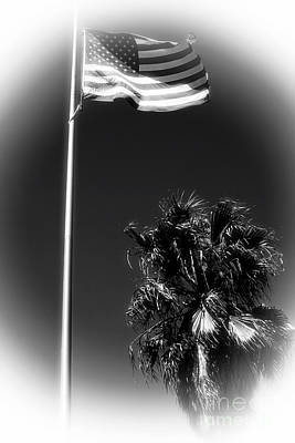 Photograph - Flag And The Palm by John Rizzuto