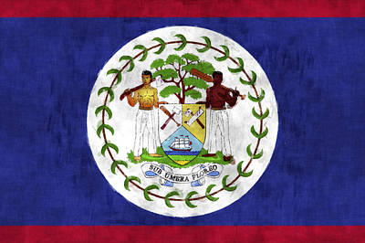 Flag Of Belize Art Print
