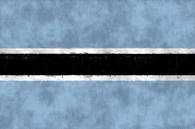 Flag Of Botswana Art Print by World Art Prints And Designs