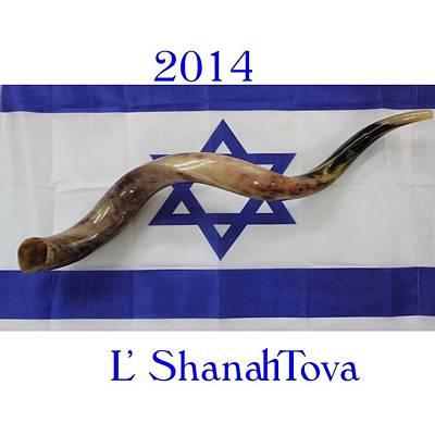 Flag Of Israel New Year Original