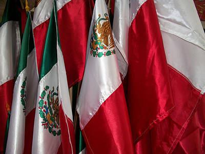 Photograph - Flags Of Mexico by Ellen Henneke