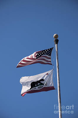 Photograph - Flags Of California by Brenda Kean