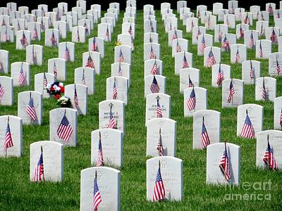 Photograph - Flags Of Honor by Ed Weidman