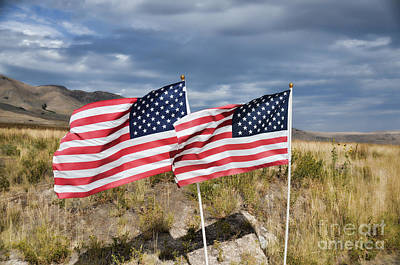 Photograph - Flags On Antelope Island by Donna Greene
