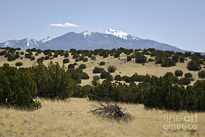 Southwest Photograph - Flagstaff Landscape IIi by Dave Gordon