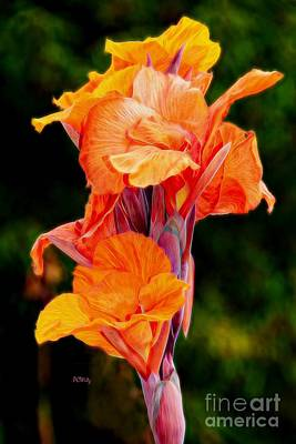 Photograph - Flamboyant Orange Cannas by Patrick Witz