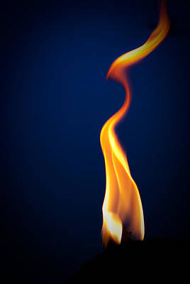 Flame Art Print by Darryl Dalton