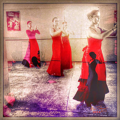Photograph - Flamenco Dream #1 by Ann Tracy