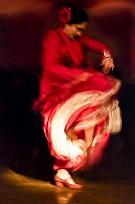 Flamenco Series 1 Art Print by Catherine Sobredo
