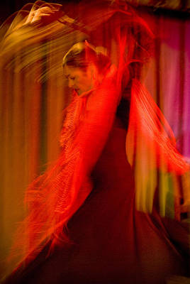 Flamenco Series 10 Art Print by Catherine Sobredo