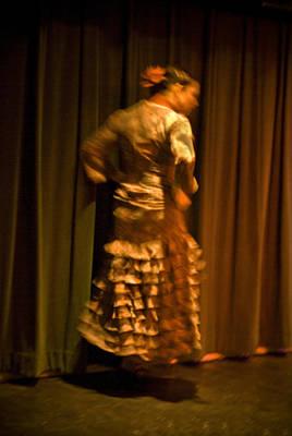 Photograph - Flamenco Series 14 by Catherine Sobredo
