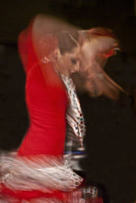Flamenco Series 3 Art Print by Catherine Sobredo