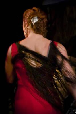 Photograph - Flamenco Series 6 by Catherine Sobredo