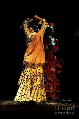 Photograph - Flamenco Series #7 by Mary Machare
