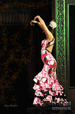 Photograph - Flamenco Series #8 by Mary Machare
