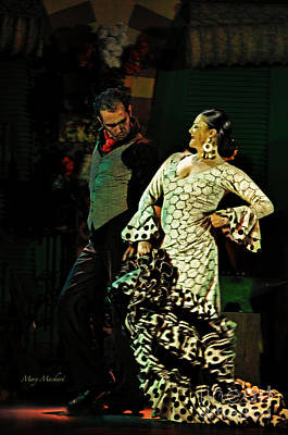 Photograph - Flamenco Series No 11 by Mary Machare