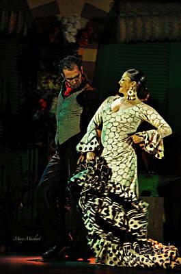 Flamenco Series No 11 Art Print by Mary Machare