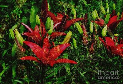 Art Print featuring the photograph Flames by Kathie Chicoine