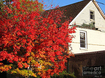 Art Print featuring the photograph Flaming Fall Colours On Farm House by Nina Silver