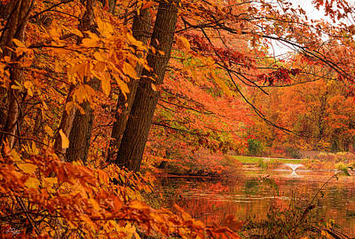 Reds Of Autumn Photograph - Flaming Leaves by Lourry Legarde