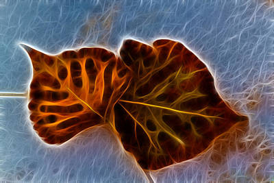 Fallen Leaf Mixed Media - Flaming Leaves by Shane Bechler