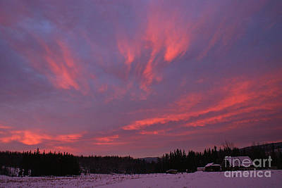 Photograph - Flaming Morning Sky by Stanza Widen