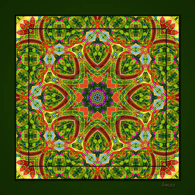 Art Print featuring the photograph Flaming Neck Kaleidoscope by Barbara MacPhail