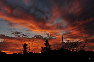 Photograph - Flaming Sunset by Paulette B Wright
