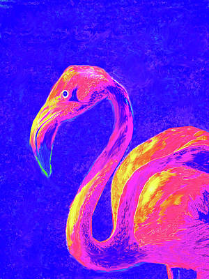 Digital Art - Flamingo by Jane Schnetlage