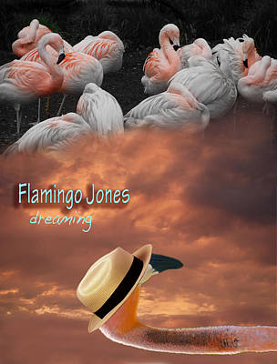 Photograph - Flamingo Jones - Dreaming by Kathleen Grace