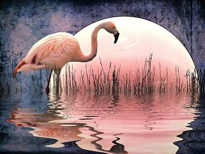 Wild Birds Digital Art - Flamingo Moon by Sharon Lisa Clarke