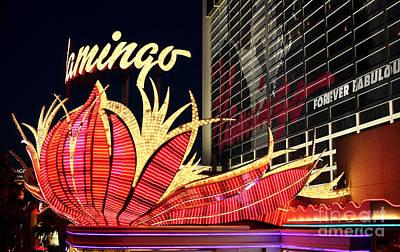 Photograph - Flamingo Night by John Rizzuto