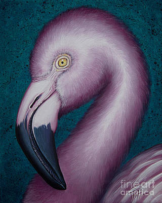 Painting - Flamingo Portrait by Tish Wynne
