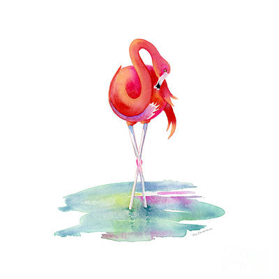 Birds Painting Rights Managed Images - Flamingo Primp Royalty-Free Image by Amy Kirkpatrick