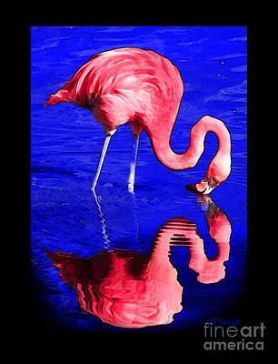 Digital Art - Flamingo Reflection by E B Schmidt