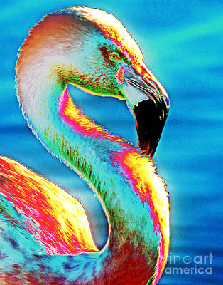 Photograph - Flamingo Solarization by Larry Oskin