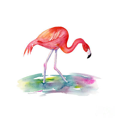 Birds Painting Rights Managed Images - Flamingo Step Royalty-Free Image by Amy Kirkpatrick