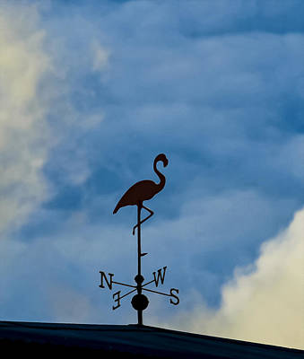 Photograph - Flamingo Weathervane by Wes Jimerson